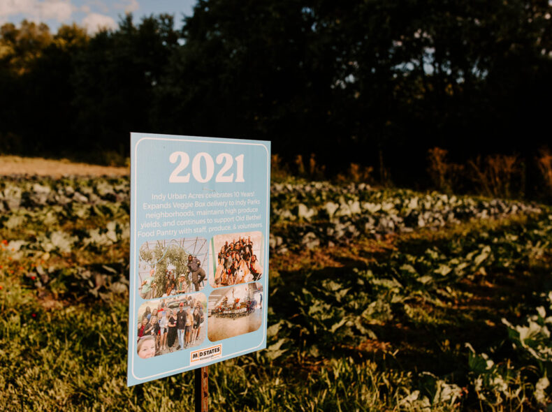 10 Years of Indy Urban Acres